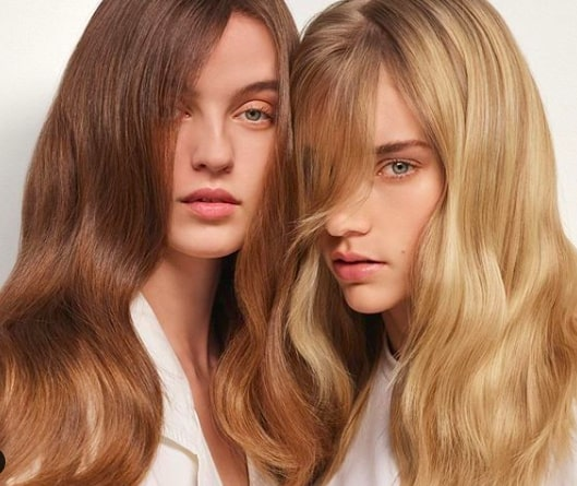 Balayage Bar Packages